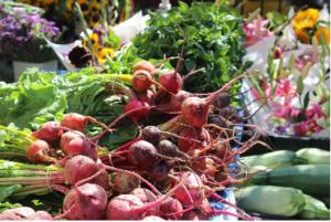 fresh produce stall in devon