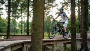 Haldon Forest Park Cycle Routes Devon-min