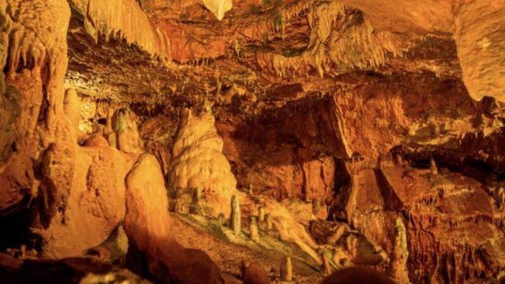 Kent's Cavern South Devon Autumn (1)-min