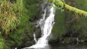 Shavercombe Falls-min