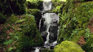 Canonteign Waterfall in South Devon