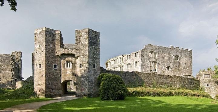 PhotoBerry Pomeroy Castle Devon-min