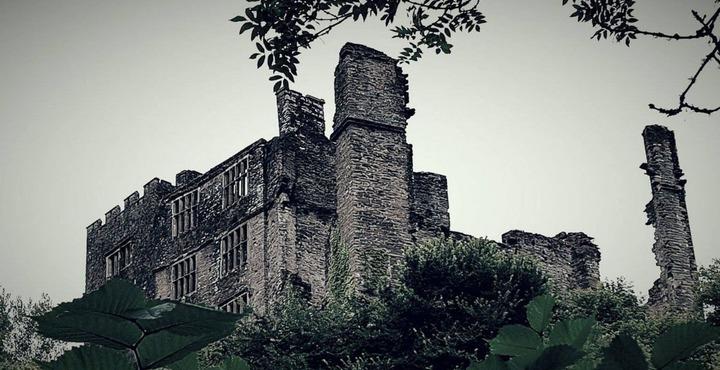 PhotoBerry Pomeroy Castle-min