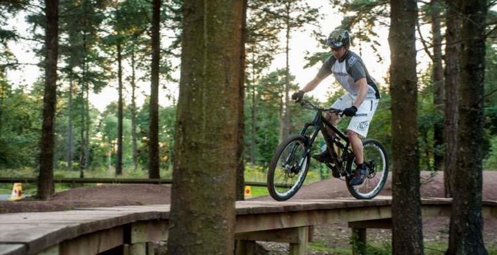 PhotoHaldon Forest Park Cycle Routes Devon-min