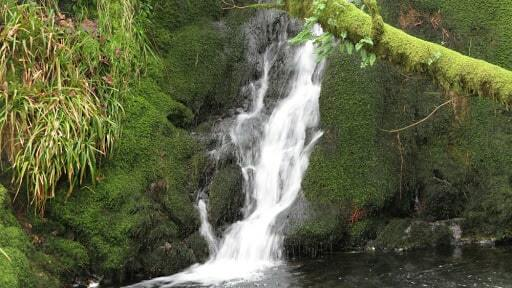 PhotoShavercombe Falls-min