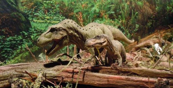 PhotoTorquay's Dinosaur World Halloween-min